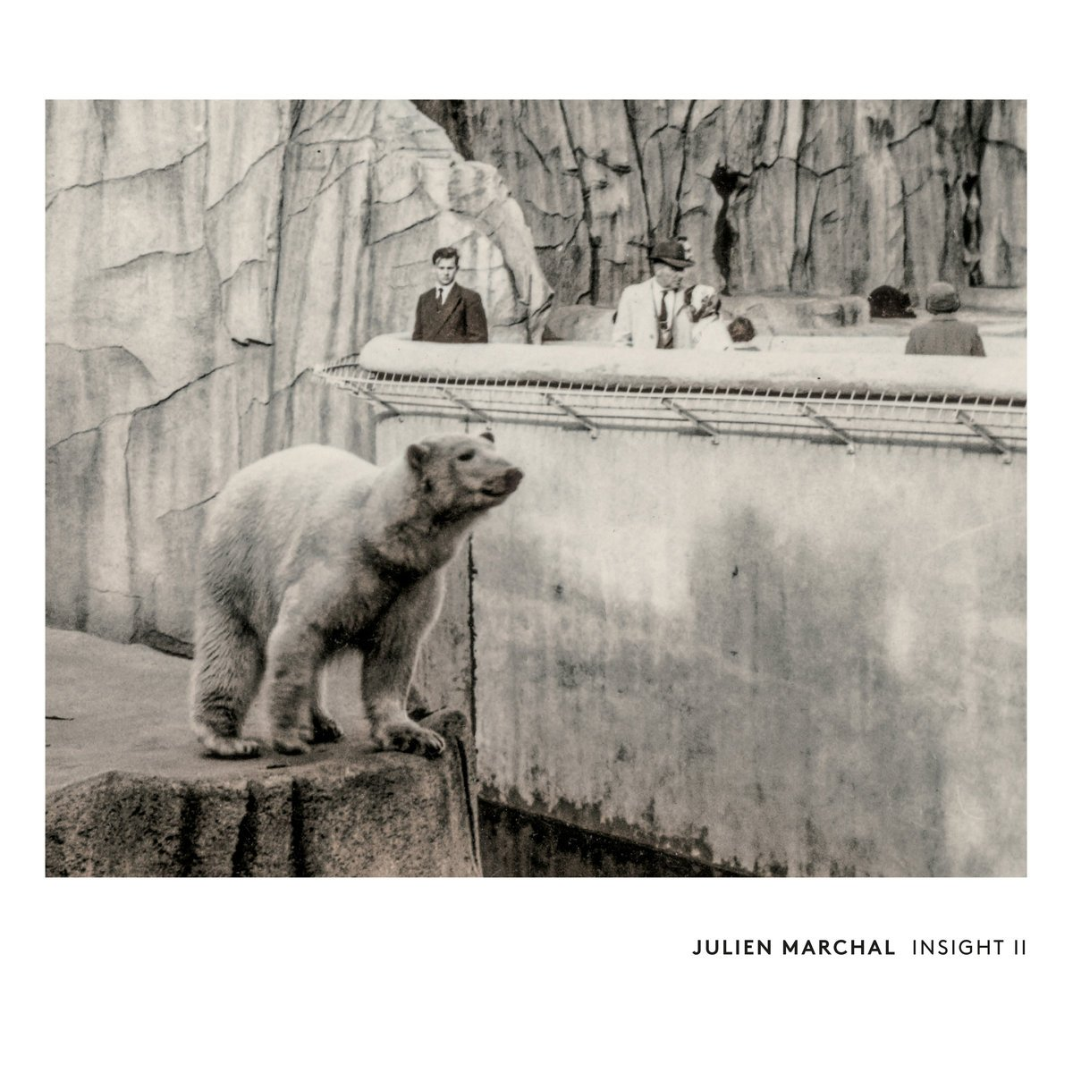 Julien Marchal - Insight II (2016)