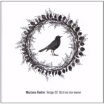 Marissa Nadler: Thinking of you