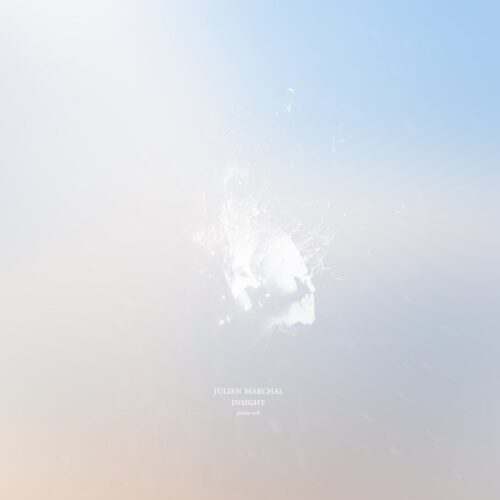 Julien Marchal - Insight LP (2015)